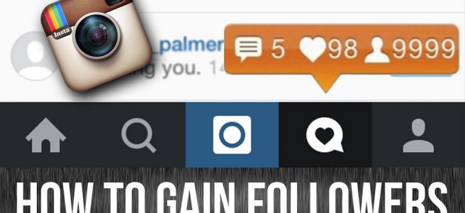 Access Free Instagram Followers Without Registration Or Password